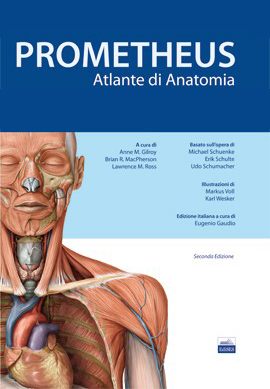 Atlante di Anatomia - Prometheus