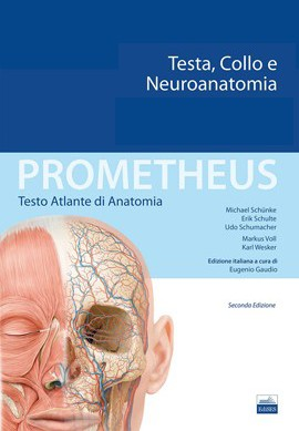 Prometheus - Testa, Collo e Neuroanatomi...
